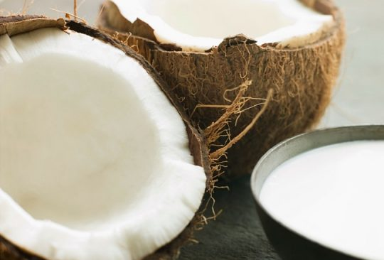 Legal Coconut Milk for the SCD and GAPS Diet