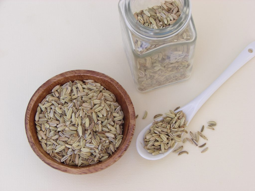 vanilla fennel panna cotta (gaps, paleo)