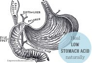 Heal Low Stomach Acid Naturally