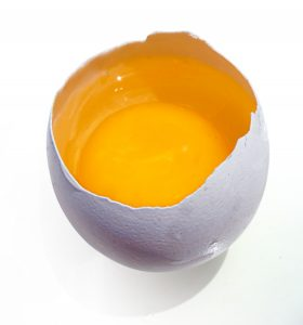 small egg yolk