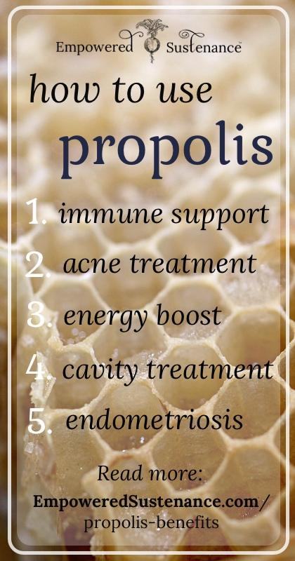 The benefits of propolis and how to take it
