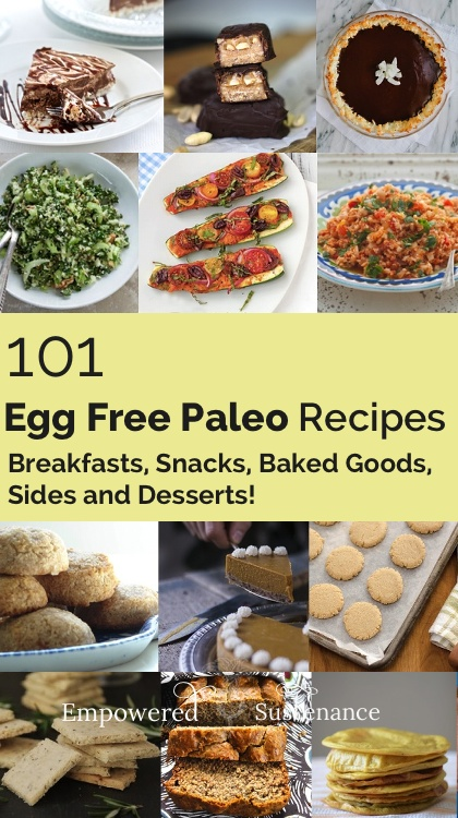 101 egg free paleo recipes