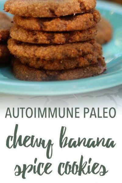 image of autoimmune paleo chewy banana spice cookies