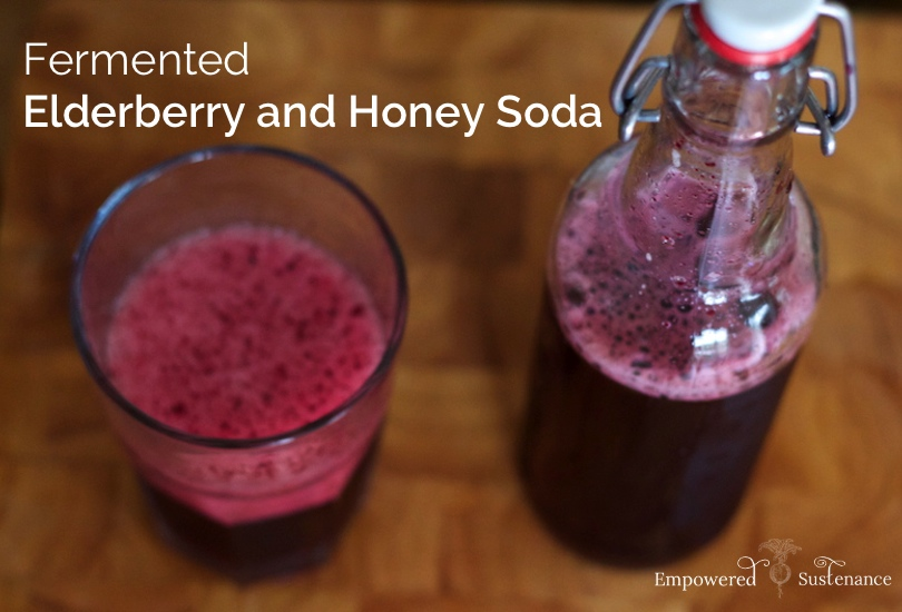 elderberry soda made with honey