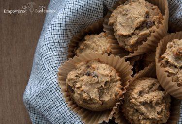 Banana + blueberry autoimmune paleo muffins