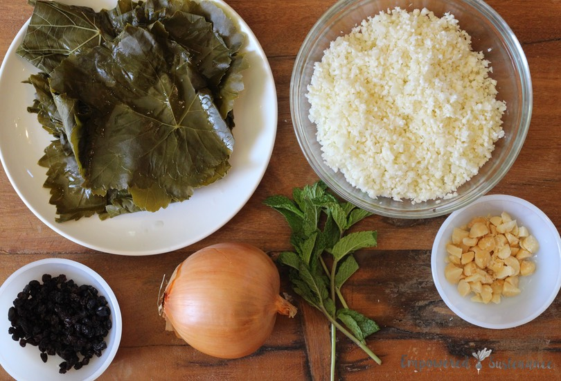 Paleo dolmas recipe - like the real thing!
