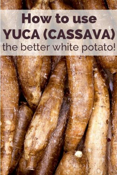 image of yuca
