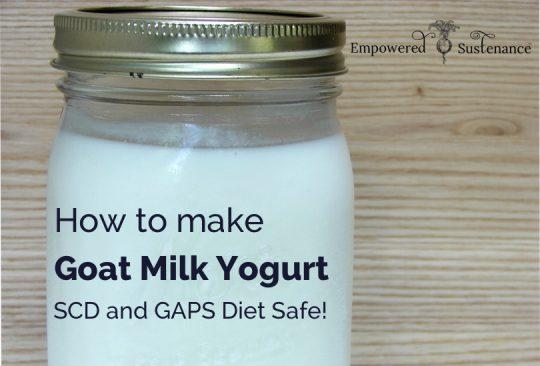 Goat Milk Yogurt Recipe (SCD and GAPS Diet)