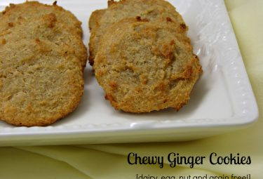 grain free, allergen free chewy ginger cookies