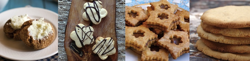 coconut flour recipes cookies 2