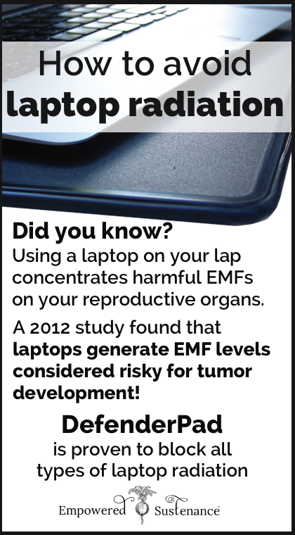 Laptop Radiation: Don\'t fry your swimmers or zap your uterus!