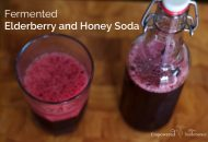 Fermented Elderberry and Honey Soda