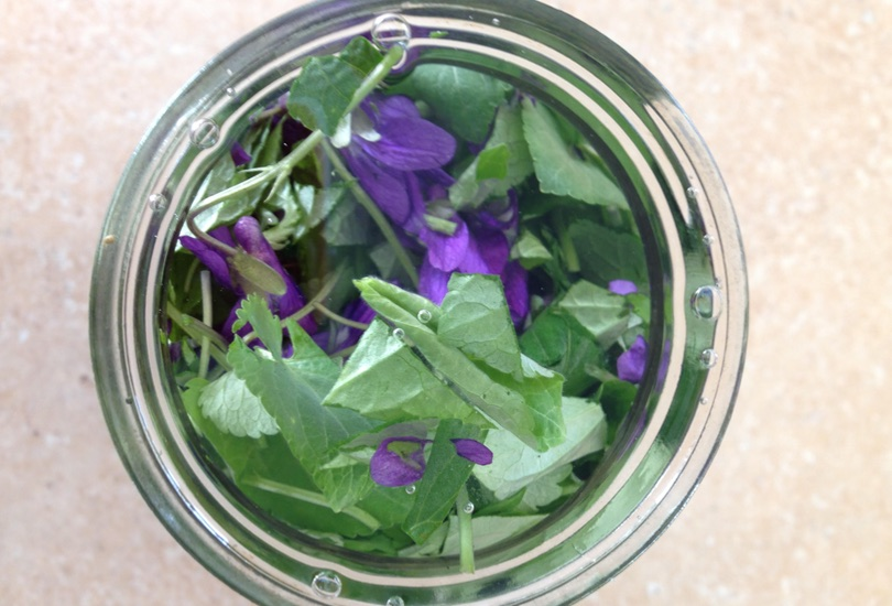 3 Ways Traditional Herbalism Surpasses Conventional Medicine